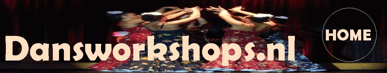 dansworkshops.nl